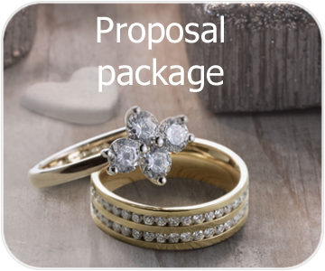 proposal package button